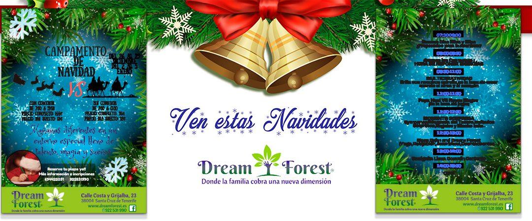 Receta para unas navidades en Dreamforest